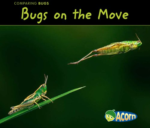 9781432935672: Bugs on the Move (Comparing Bugs)
