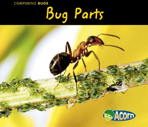 9781432935740: Bug Parts (Comparing Bugs)