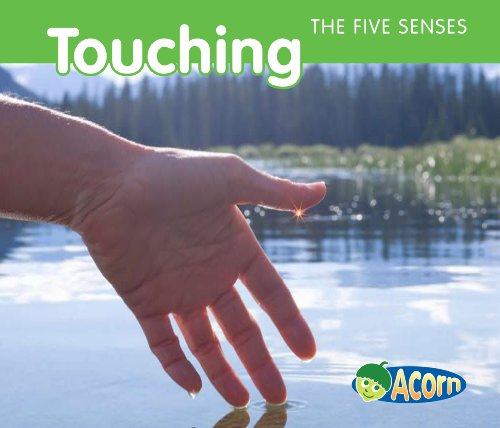 9781432936822: Touching (The Five Senses)