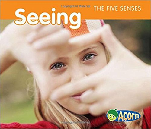 9781432936853: Seeing (The Five Senses)