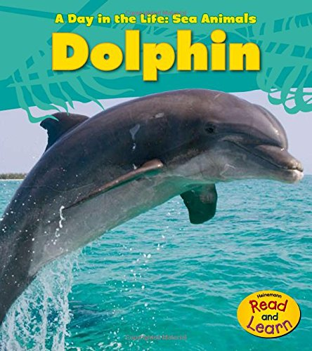 9781432940065: Dolphin (A Day in the Life: Sea Animals)