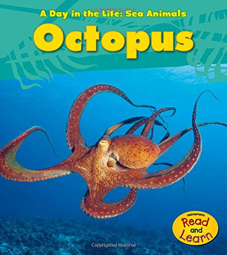 Octopus (Day in the Life: Sea Animals): Spilsbury, Louise A.