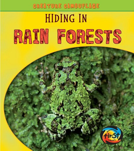 9781432940355: Hiding in Rain Forests (Creature Camouflage)
