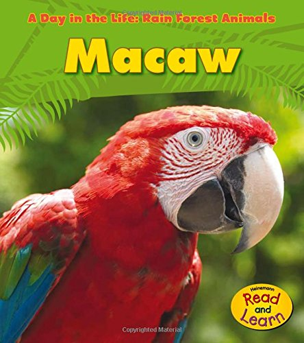 9781432941161: Macaw (A Day in the Life: Rain Forest Animals)