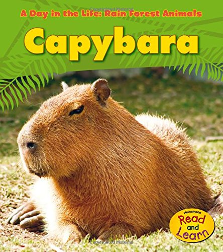 9781432941215: Capybara (A Day in the Life: Rain Forest Animals)