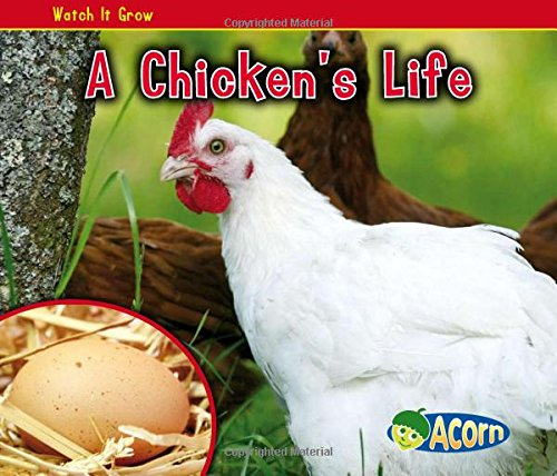 9781432941482: A Chicken's Life (Watch It Grow)