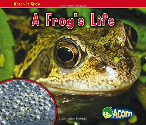 9781432941499: A Frog's Life (Watch It Grow)