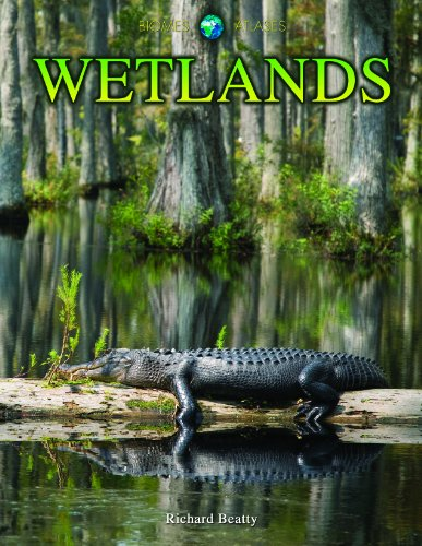 9781432941833: Wetlands (Biomes Atlases)
