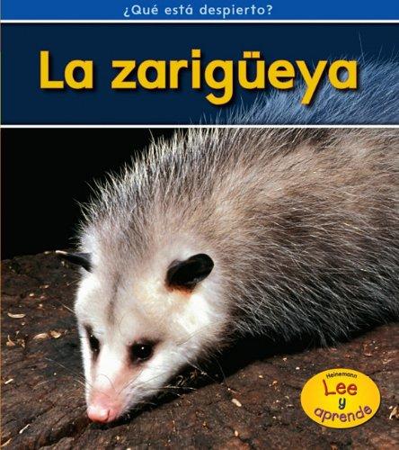 9781432942168: La zarigüeya (¿Qué está despierto?) (Spanish Edition)