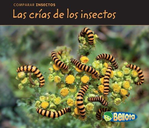 Las crÃas de los insectos (Comparar insectos): Charlotte Guillain