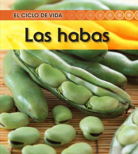 9781432943615: La habas / Broad Bean (El ciclo de vida / Life Cycle of a. . .)