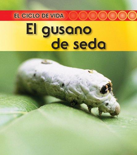 9781432943882: El gusano de seda / Silkworm (El ciclo de vida / Life Cycle of a. . .)