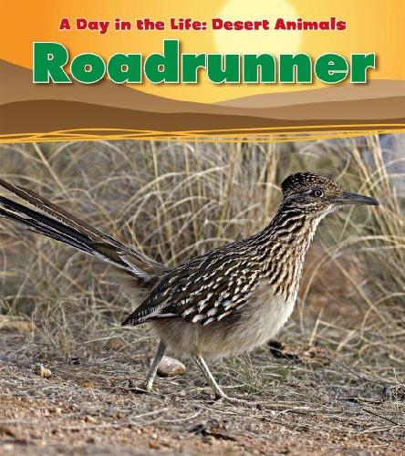 Roadrunner (A Day in the Life: Desert Animals) (9781432947750) by Ganeri, Anita