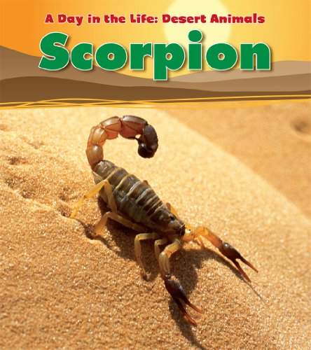 Scorpion (A Day in the Life: Desert Animals) (9781432947767) by Anita Ganeri