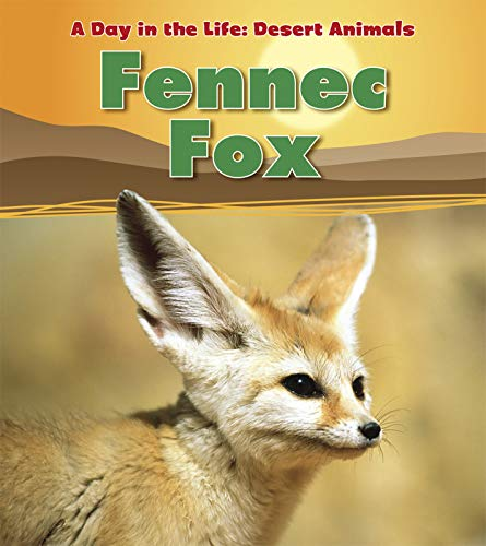 Fennec Fox (A Day in the Life: