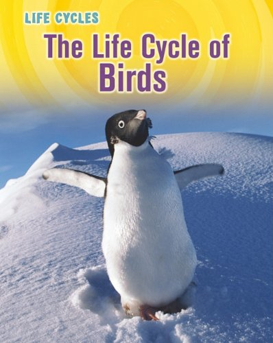 9781432949792: The Life Cycle of Birds (Life Cycles)