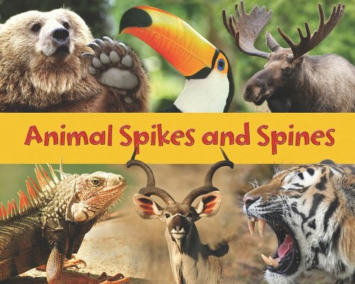 9781432955007: Animal Spikes and Spines (Acorn Read-aloud:)