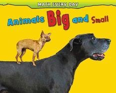 9781432957384: Animals Big and Small (Math Every Day)