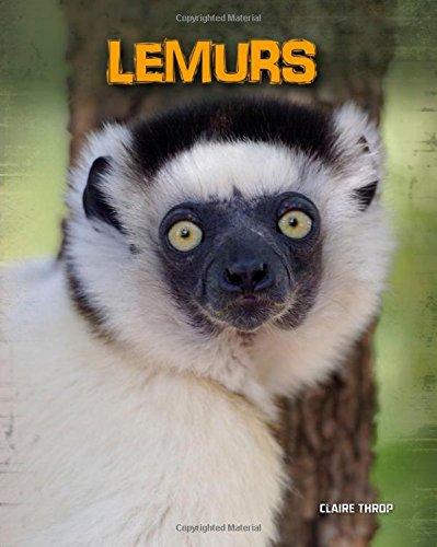 9781432958718: Lemurs (Living in the Wild: Primates)