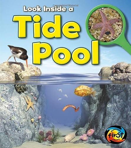 9781432972042: Tide Pool: Look Inside
