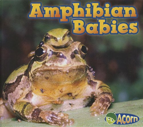 Amphibian Babies (Acorn): Veitch, Catherine