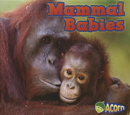 Mammal Babies (Animal Babies): Veitch, Catherine