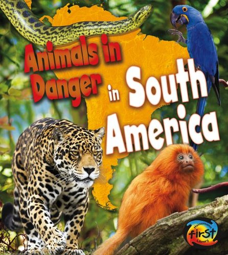 9781432976842: Animals in Danger in South America