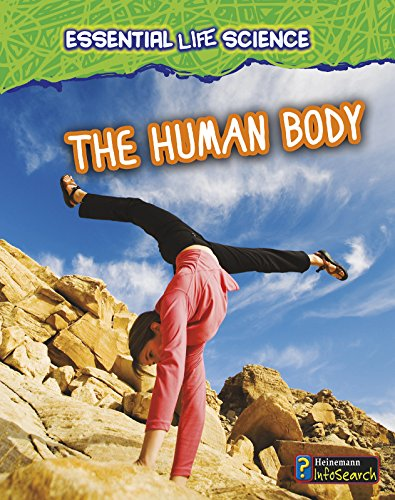 9781432978389: The Human Body (Essential Life Science)