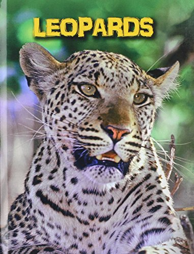 Leopards (Library Binding): Claire Throp