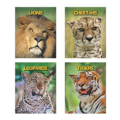 Living in the Wild: Big Cats: Guillain, Charlotte; Throp, Claire; Claybourne, Anna