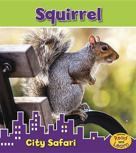 Squirrel (City Safari): Thomas, Isabel