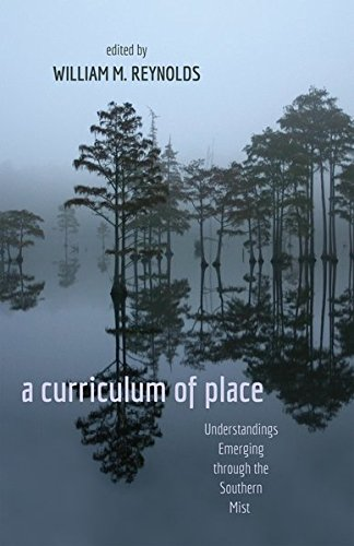 9781433113338: a curriculum of place: Understandings Emerging through the Southern Mist (Counterpoints)