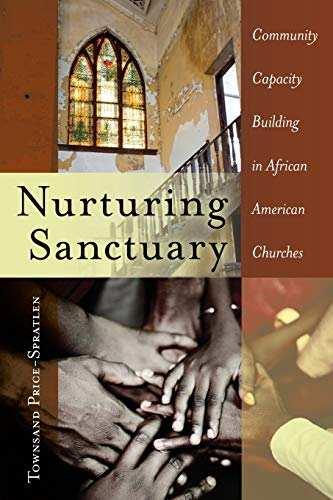 Nurturing Sanctuary: Community Capacity Building in African American Churches (Black Studies and ...