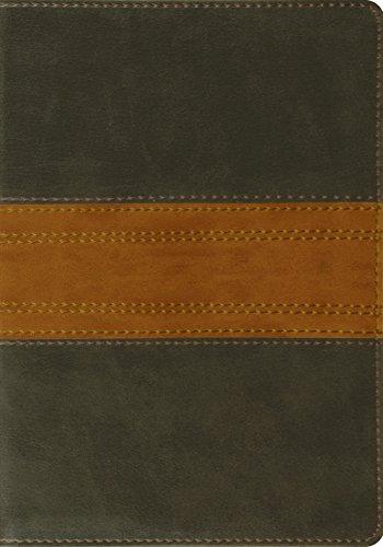 9781433528682: ESV Large Print Bible (TruTone, Forest/Tan, Trail Design)