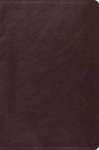 9781433530852: ESV Single Column Legacy Bible (Esv Bibles)