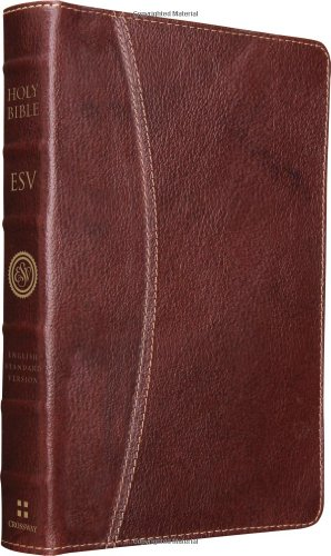 9781433532672: Vintage Thinline Bible-ESV-Hemisphere