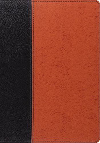 9781433532764: ESV Study Bible (Black/Saddle, Timeless Design)