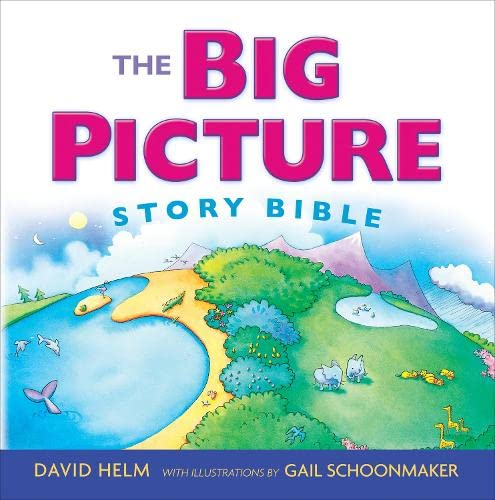 9781433543111: The Big Picture Story Bible