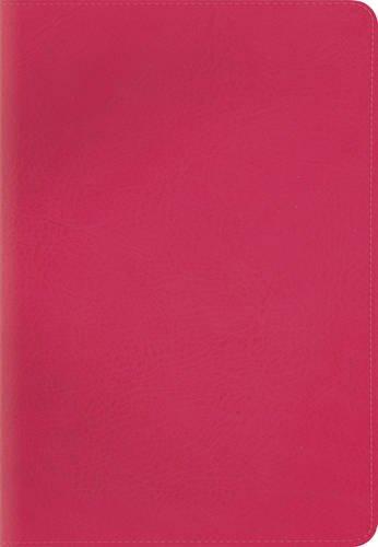 9781433543937: ESV Kid's Compact Bible (TruTone, Pretty Pink) (Esv Bibles)