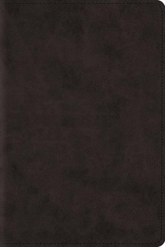 9781433544088: ESV Study Bible, Personal Size (Esv Bibles)