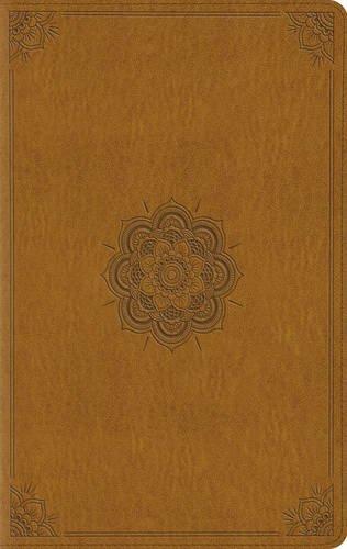 9781433545764: ESV Large Print Compact Bible
