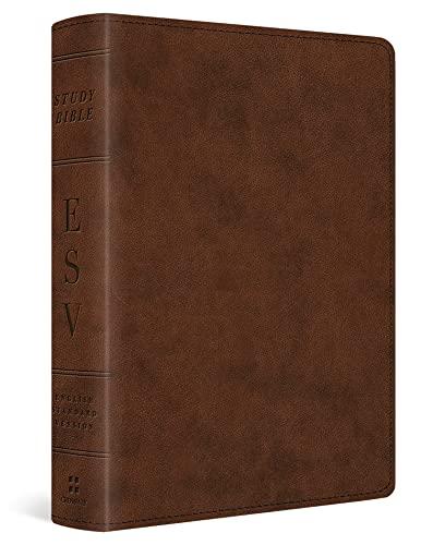 Study Bible-ESV-Personal Size (Imitation Leather)