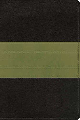 ESV Study Bible, Personal Size (TruTone, Charcoal/Sage, Trail Design): ESV Bibles by Crossway