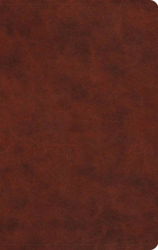9781433550669: ESV Value Thinline Bible (TruTone, Chestnut)