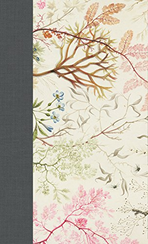 9781433552816: ESV Journaling Bible, Writer's Edition (Elegant Grace)