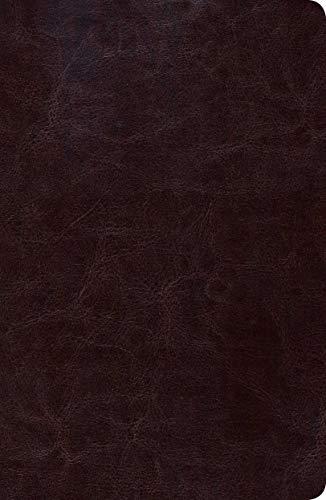 9781433602504: Biblia de Estudio Scofield Tomano Personal-Rvr 1960