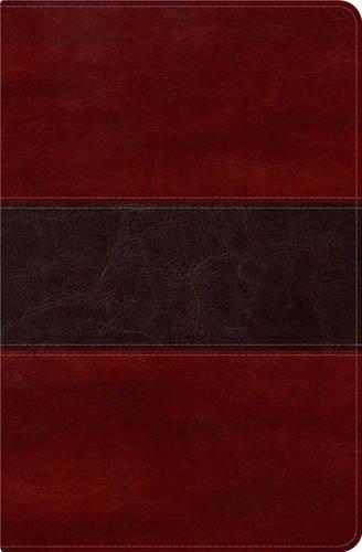 9781433602771: RVR 1960 Biblia del Pescador, caoba símil piel de lujo con índice: Evangelismo Discipulado Ministerio (Spanish Edition)