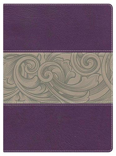 Holman Study Bible-NKJV: Broadman & Holman