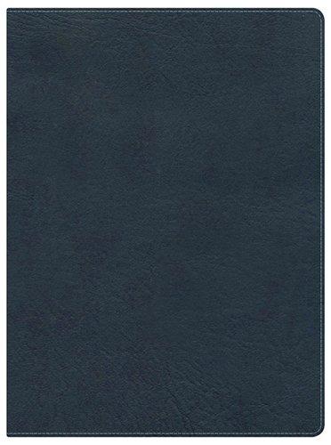 9781433605154: KJV Study Bible, Slate Blue LeatherTouch