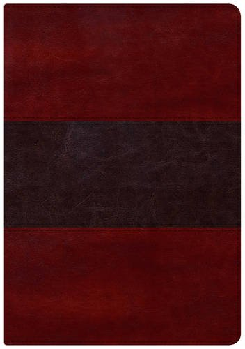 9781433607493: HCSB Large Print Study Bible, Mahogany LeatherTouch Indexed